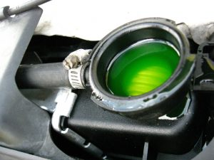 Antifreeze in radiator
